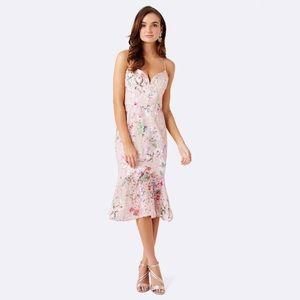 Ever New Milton Cami Flippy Dress